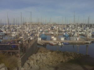 Monterey Bay Wharf